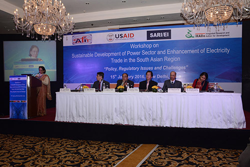 SAFIR - IRADe Workshop on Sustainable Development